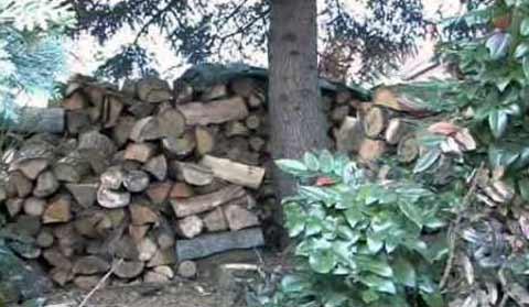 Basiswissen: Heizen mit Holz